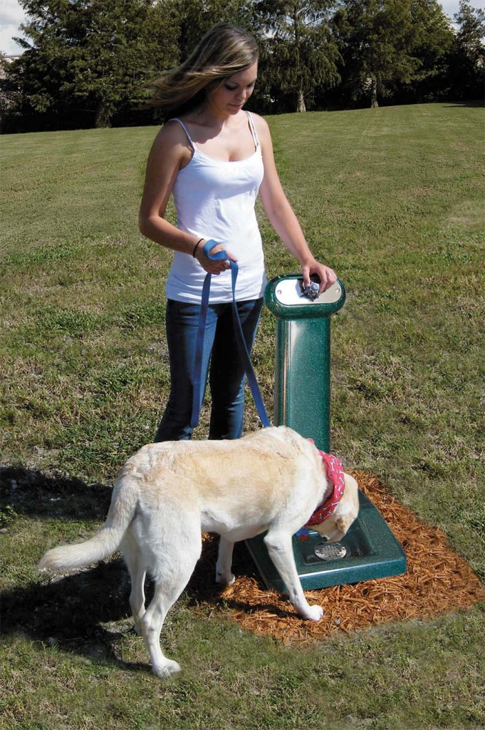 doggie drinking fountain