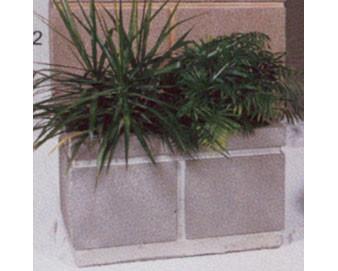 Rectangular Concrete Planter