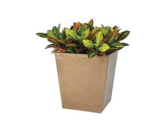 St. Louis Series Planter