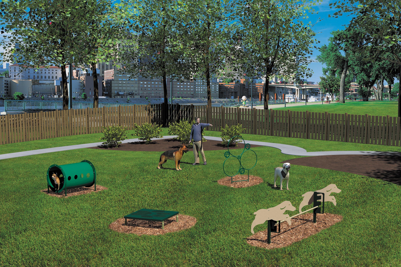 Novice Dog Park