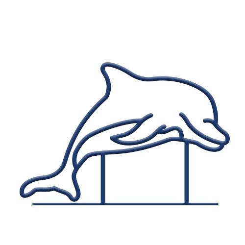 Dolphin Bike Rack