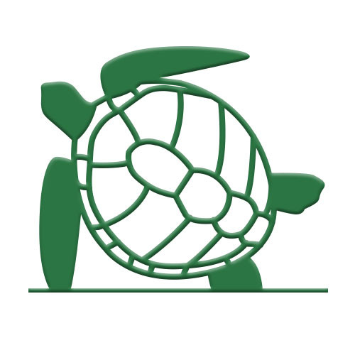 Sea Turtle Bike Rack